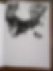 sérigraphie 1 | sérigraphie maison diy, avril 2020